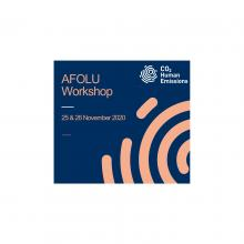 AFOLU Workshop